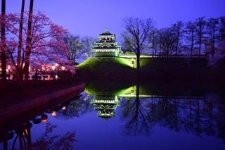 16.04.07夜桜.JPG