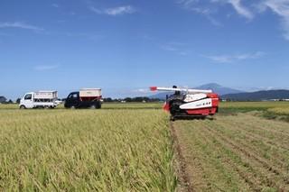 16.09.23収穫.jpg