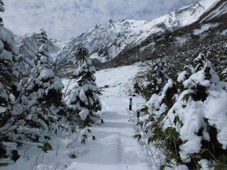 17.10.26栂池雪景色.jpg