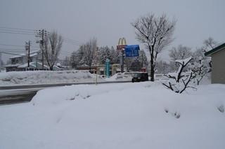 18.02.05再び雪ー1.JPG