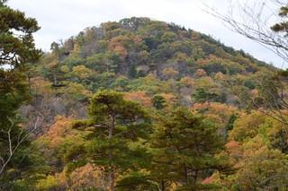 18.12.02里山の紅葉.JPG