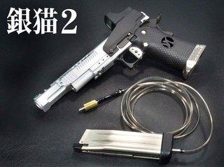 銀猫2いめーじ1.jpg